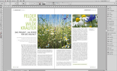 naturmagazin in InDesign