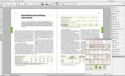 Bildschrimfoto InDesign Doppelseite mit Bibliothek Heft Schule und Beratung