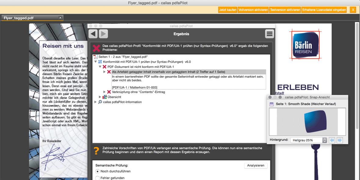 Bildschirmfoto callas pdfaPilot bei der PDF/UA Prüfung