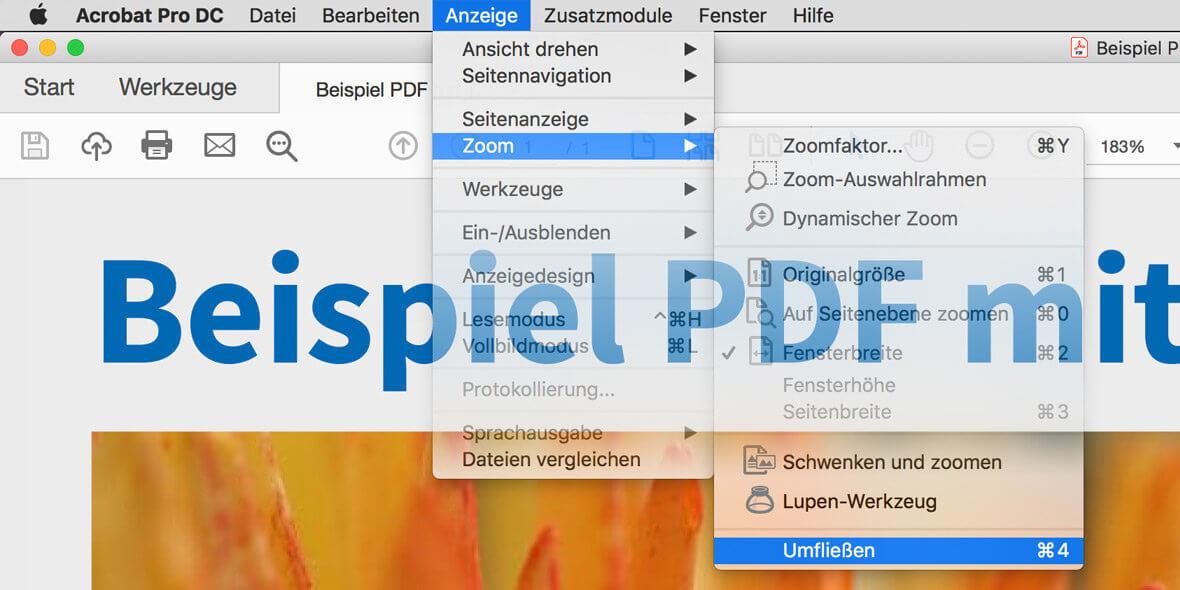 """Bildschrimfoto PDF in Acrobat, Menüeintrag """"Umfliessen"""" ist gewählt"""